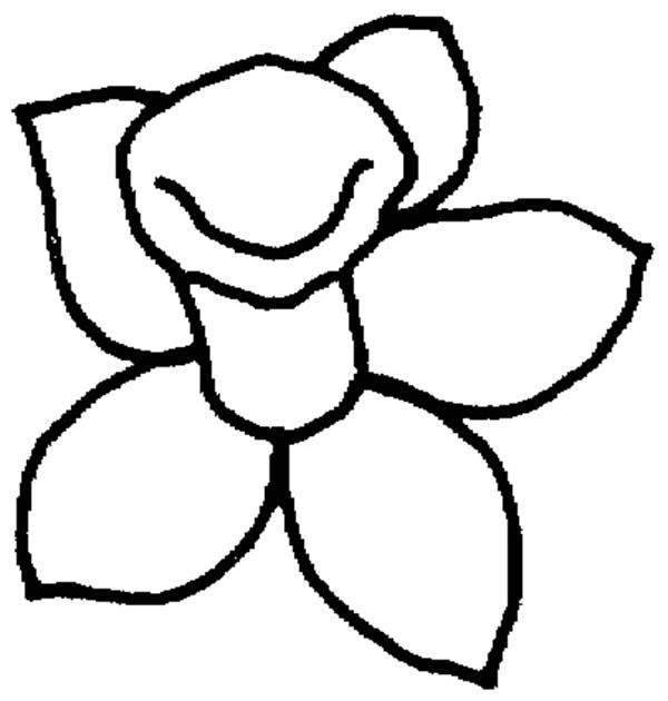 Daffodil, Daffodil Outline Coloring Page: Daffodil Outline