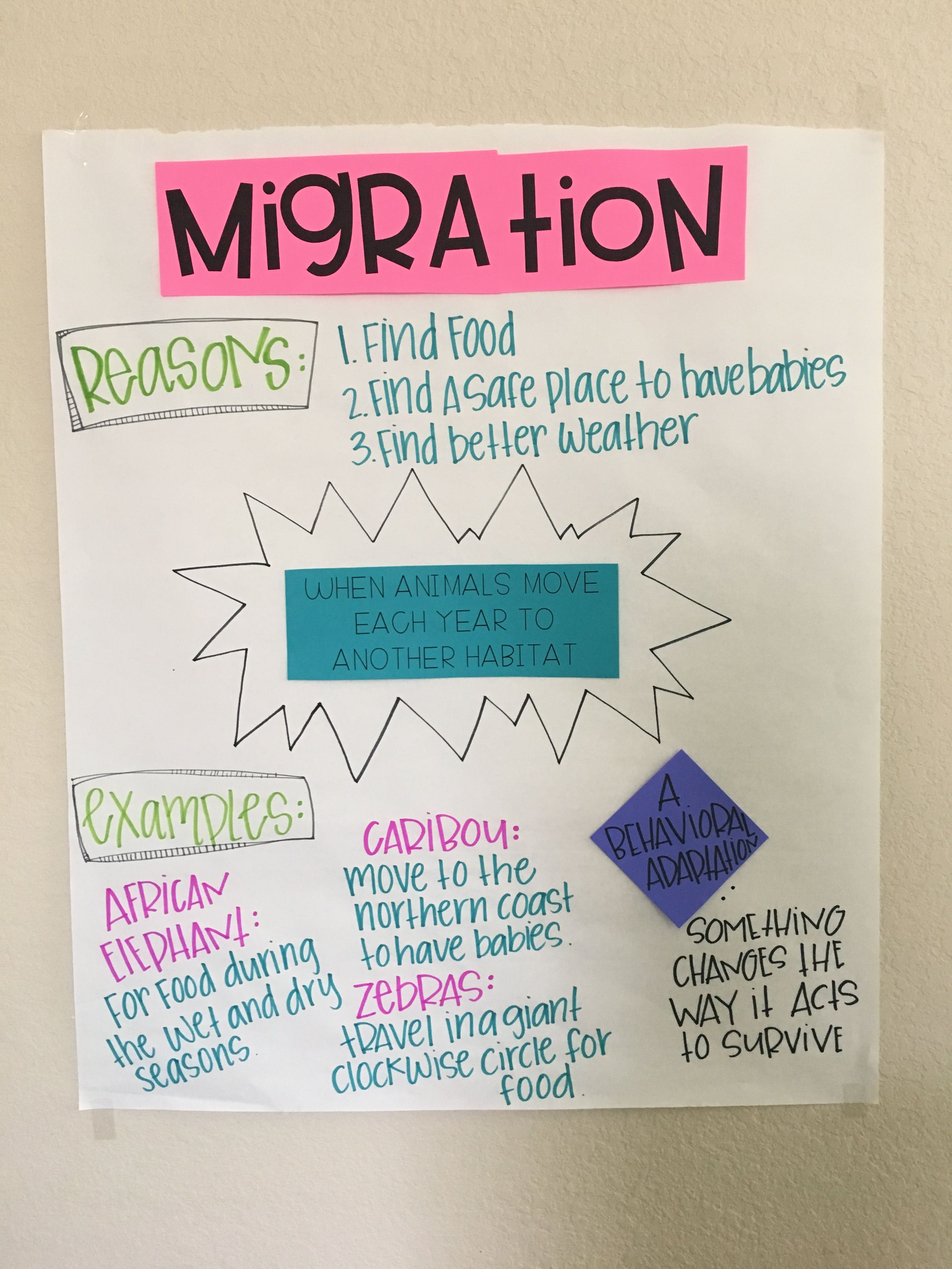 small resolution of Migration Anchor Chart   Anchor charts
