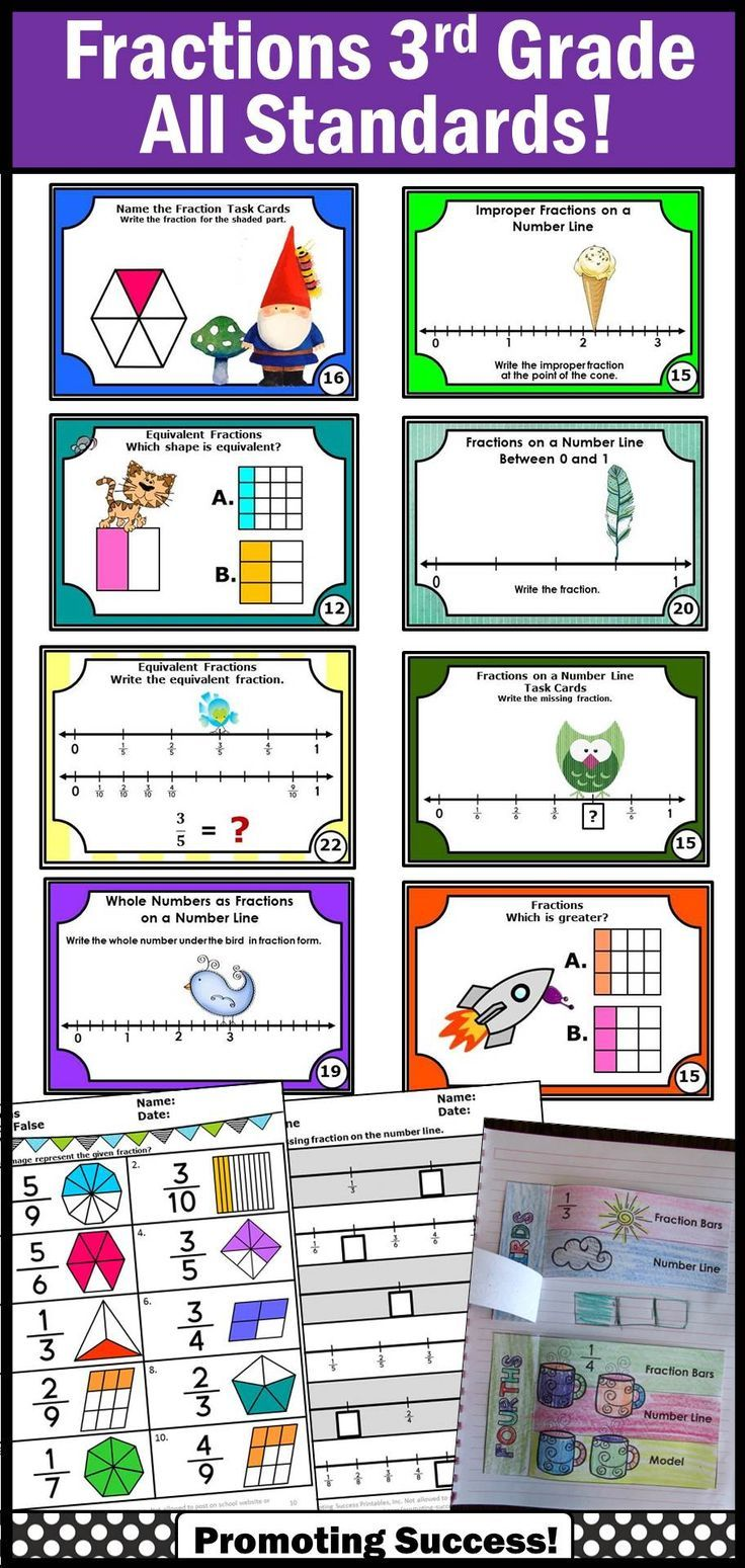 Fraction Activities 3rd Grade Common Core Math Review Test Prep ...