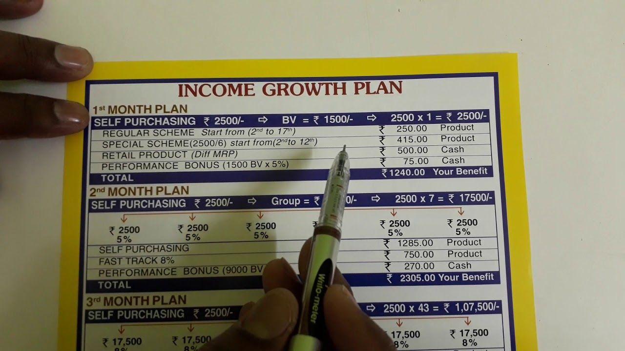 Vestige buesnes plan saleem Telugu How to plan
