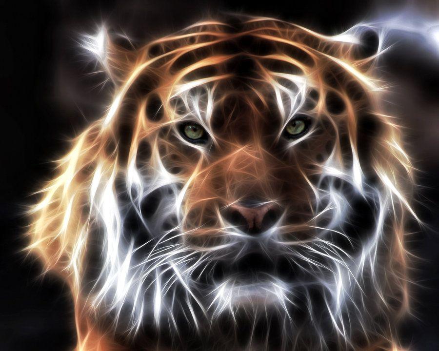 tiger fractal cats e - photo #18
