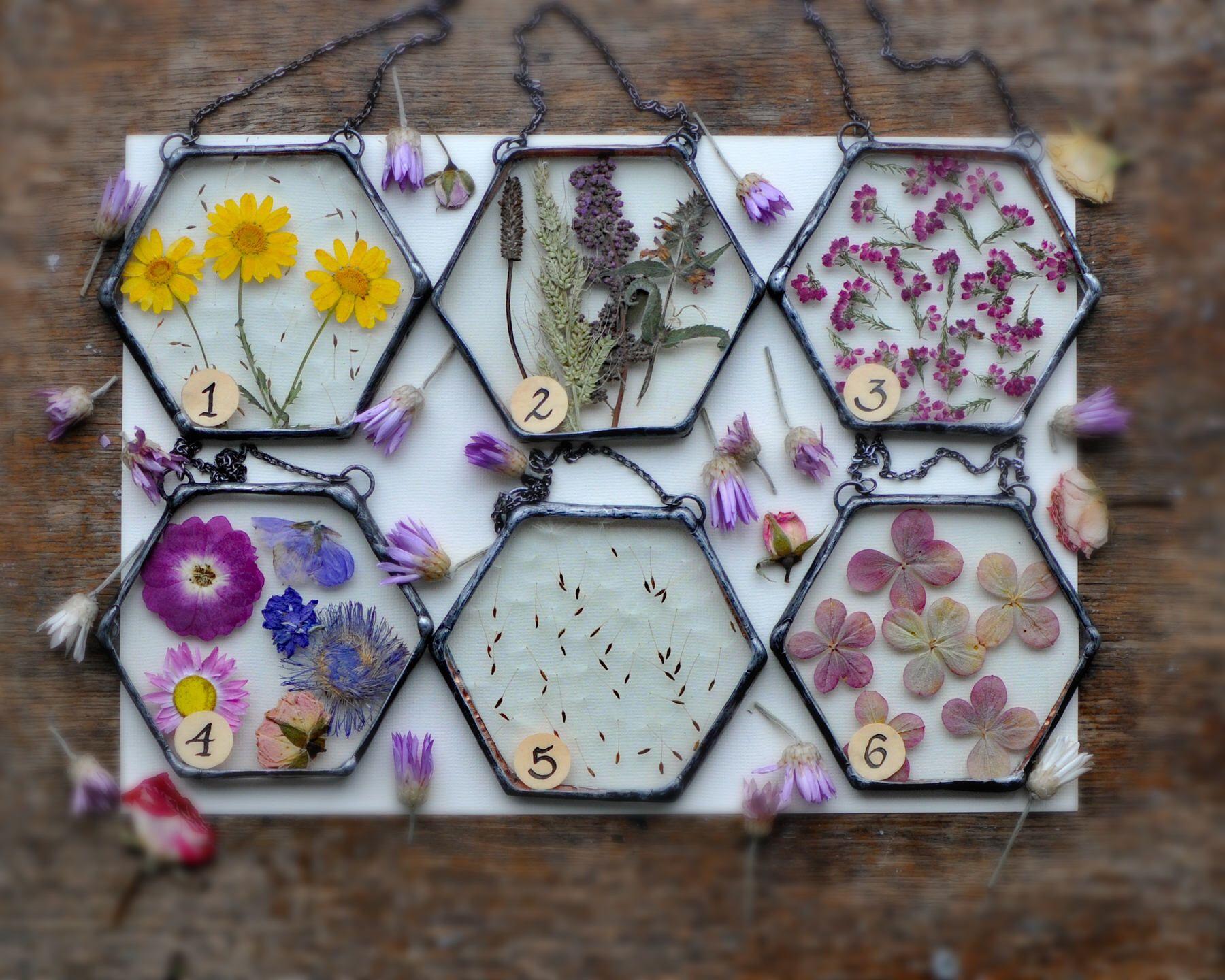 Gepresste Blumen, Luftpflanzenterrarium, Geschenk, hängendes Terrarium, Luftpflanzenterrarium, Wohnkultur, Terrariendekor, Glasmalerei