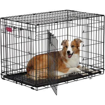 Costco Midwest Lifestages Ace Double Door Dog Crate Things I