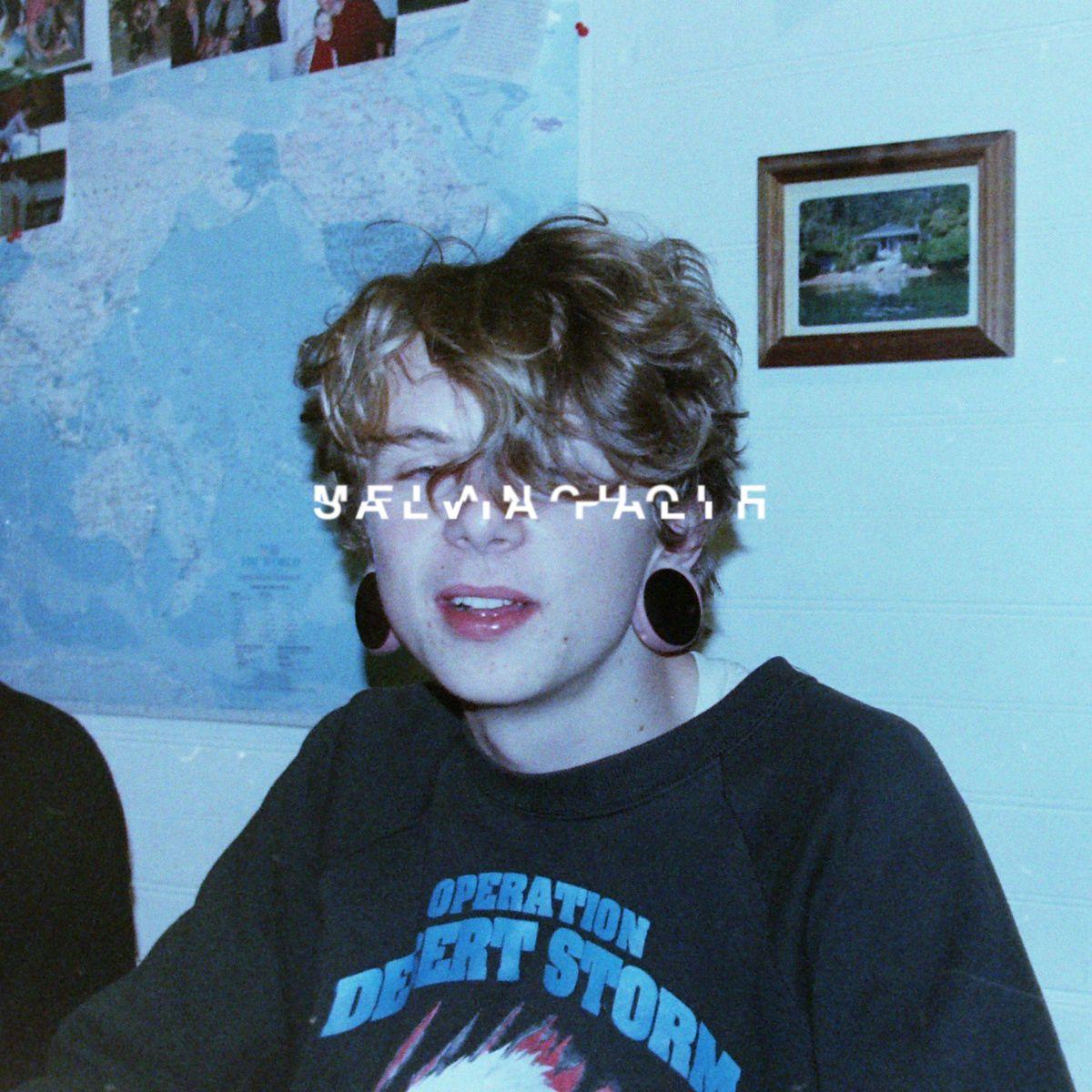 Melancholie - Salvia Palth