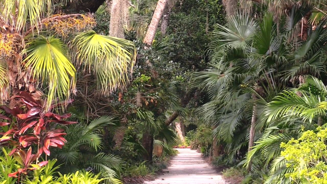 e99dbe53c4352adc79fed38645f17b5d - Botanical Gardens West Palm Beach Fl