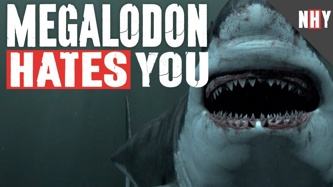 MEGALODON HATES YOU... these videos are hysterical ...