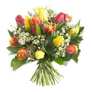 Mazzo Di Fiori Amicizia.San Valentino A Come Amore Amicizia Tulipani Fiori E Mazzo Di