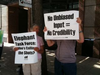 Ida And Friends Protest Woodland Park Zoo S Elephant Task Force Ida Protests At Unsafe Portland Aquarium Woodland Park Zoo Woodland Park Park