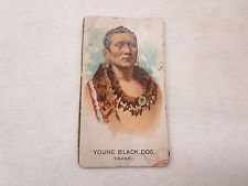 OLD TOBACCO CIGARETTE INDIAN CHIEF TRADE CARD YOUNG BLACK DOG