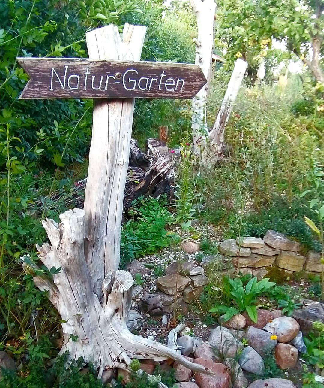 Daniel Jakumeit Naturweltgarten Instagram Fotos Und Videos Bird Bath Outdoor Decor Outdoor