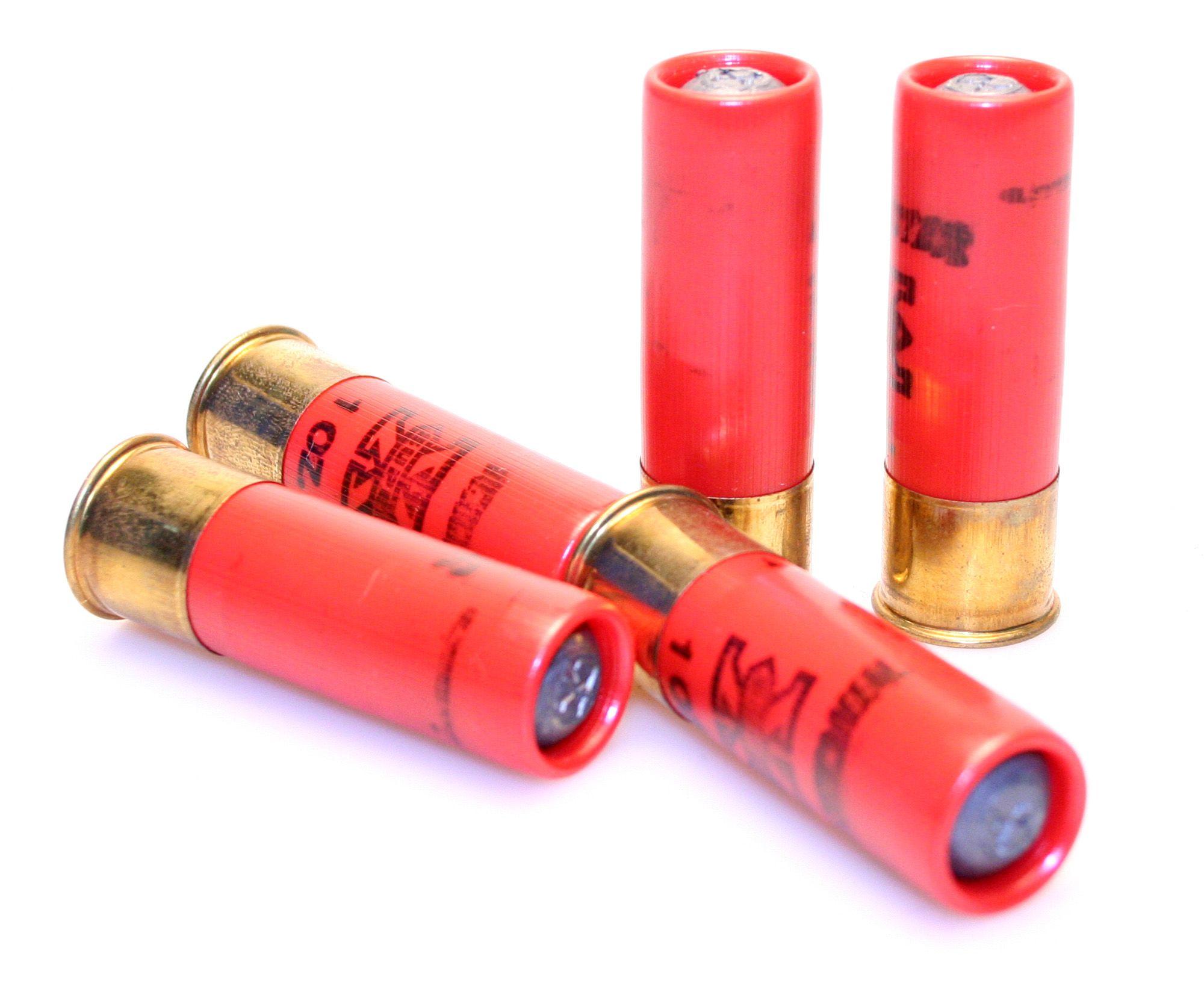 shotgun cartigas (ammo) that is needed in order to use a shotgun.