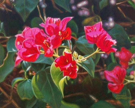 Bougainvillea 8x10, painting by artist George Lockwood