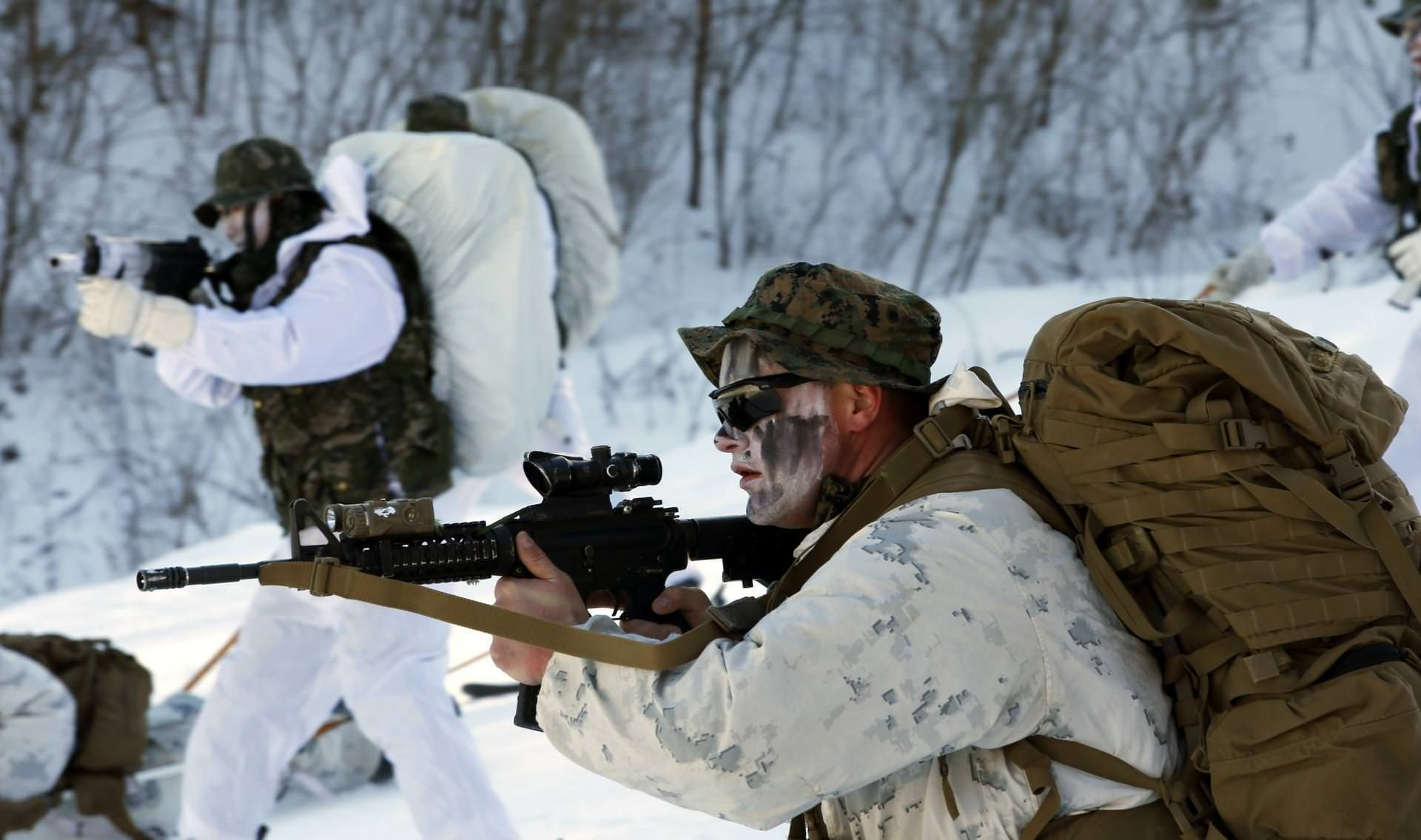 Us Marines Winter Camouflage Training During A Cold Weather Drill In South Korea 1920 1135 Marine General Cheap
