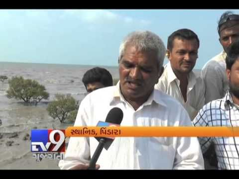 Jamnagar: Three persons drowned while two others were reported missing at sea off Pindara coast in Devbhoomi Dwarka district. The accident occurred after they were trapped in tidal waters while returning to shore after performing pitru tarpan ritual on Sunday.  Subscribe to Tv9 Gujarati https://www.youtube.com/tv9gujarati Like us on Facebook at https://www.facebook.com/tv9gujarati Follow us on Twitter at https://twitter.com/Tv9Gujarat