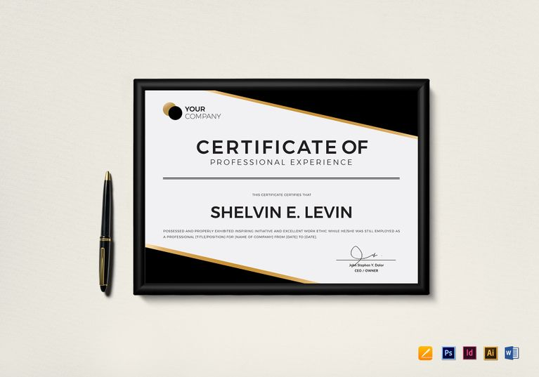 Professional Experience Certificate Template Certificate - experience certificate formats
