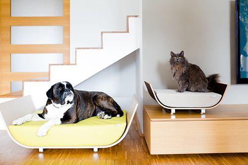 Maxpet Creates Luxury Handmade Wood Veneer Dog Beds Inspired By Mid Century Modern Design
