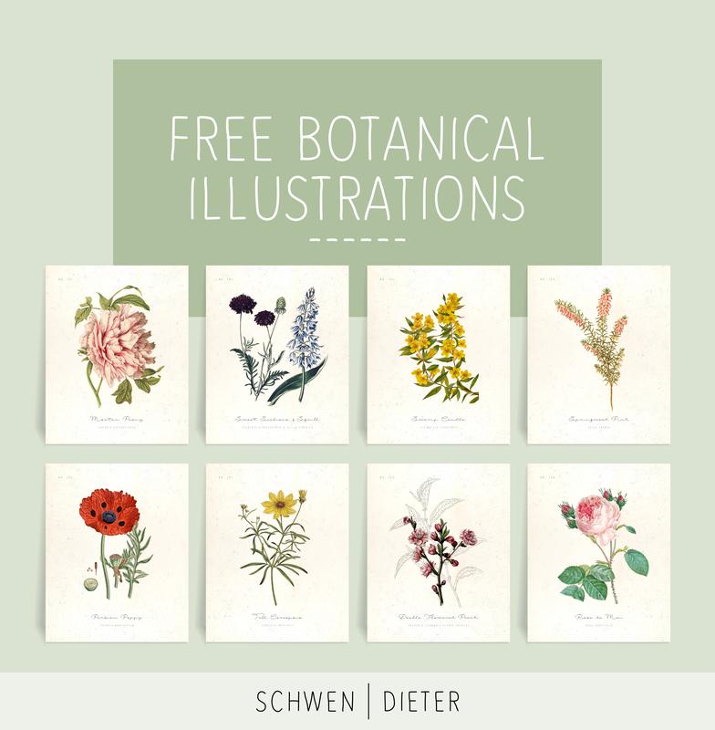 50++ Printable vintage botanical prints ideas