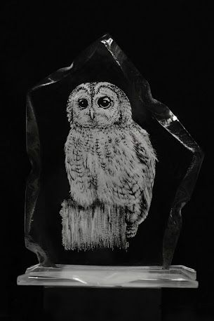 Alan Sinclair, Glass Engraving Owl made using diamond dental burrs, knife edge and wheel shaped polishers and diamond point burrs, find out more here: http://www.eternaltools.com/glass-engravings-by-alan-sinclair/