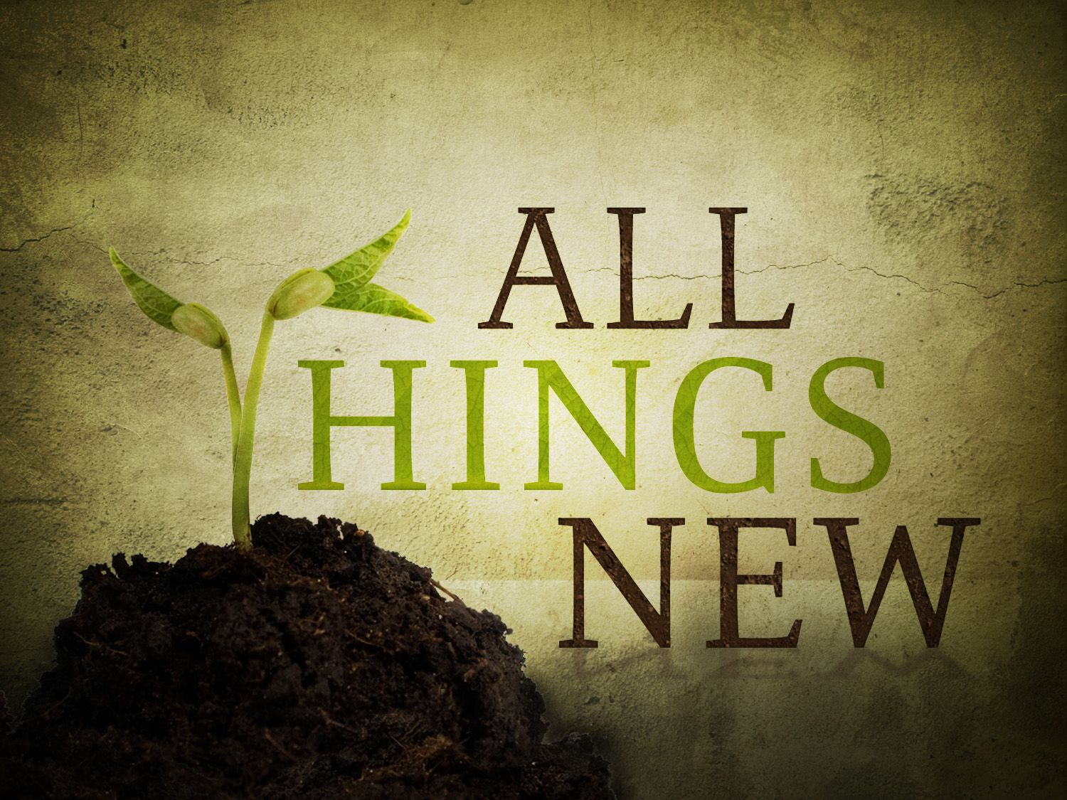 "Then He who sat on the throne said, ""Behold, I make all things new."" - Revelation 21:5"