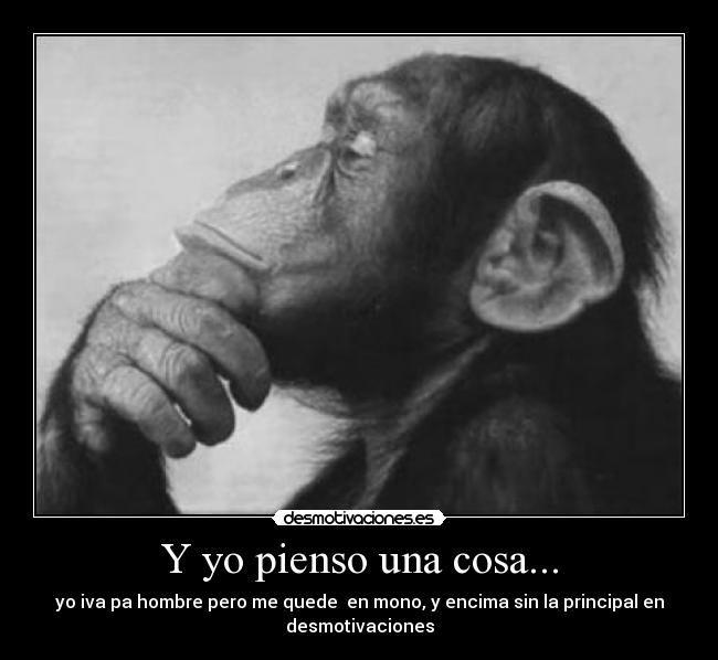 carteles pensador mono desmotivaciones