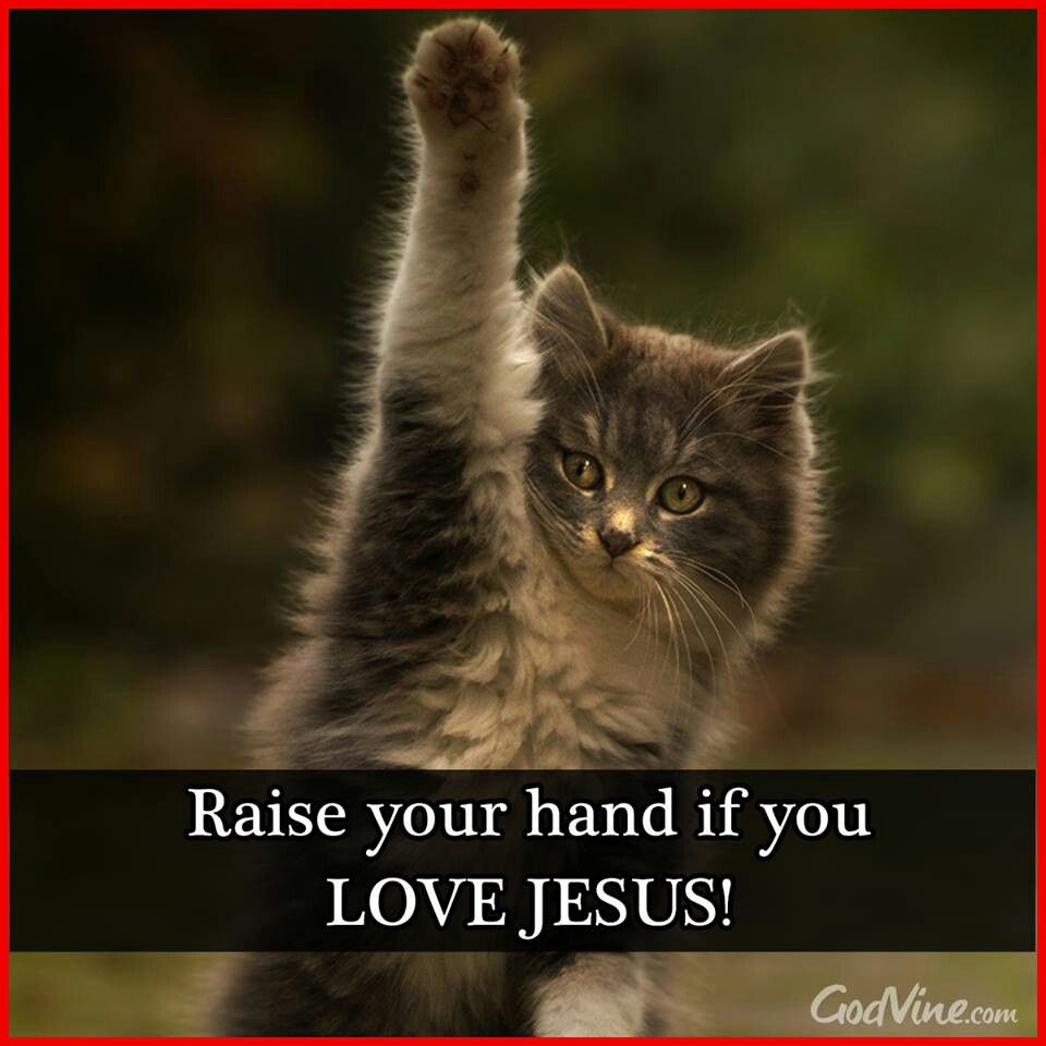 Raise your hand if you love Jesus!