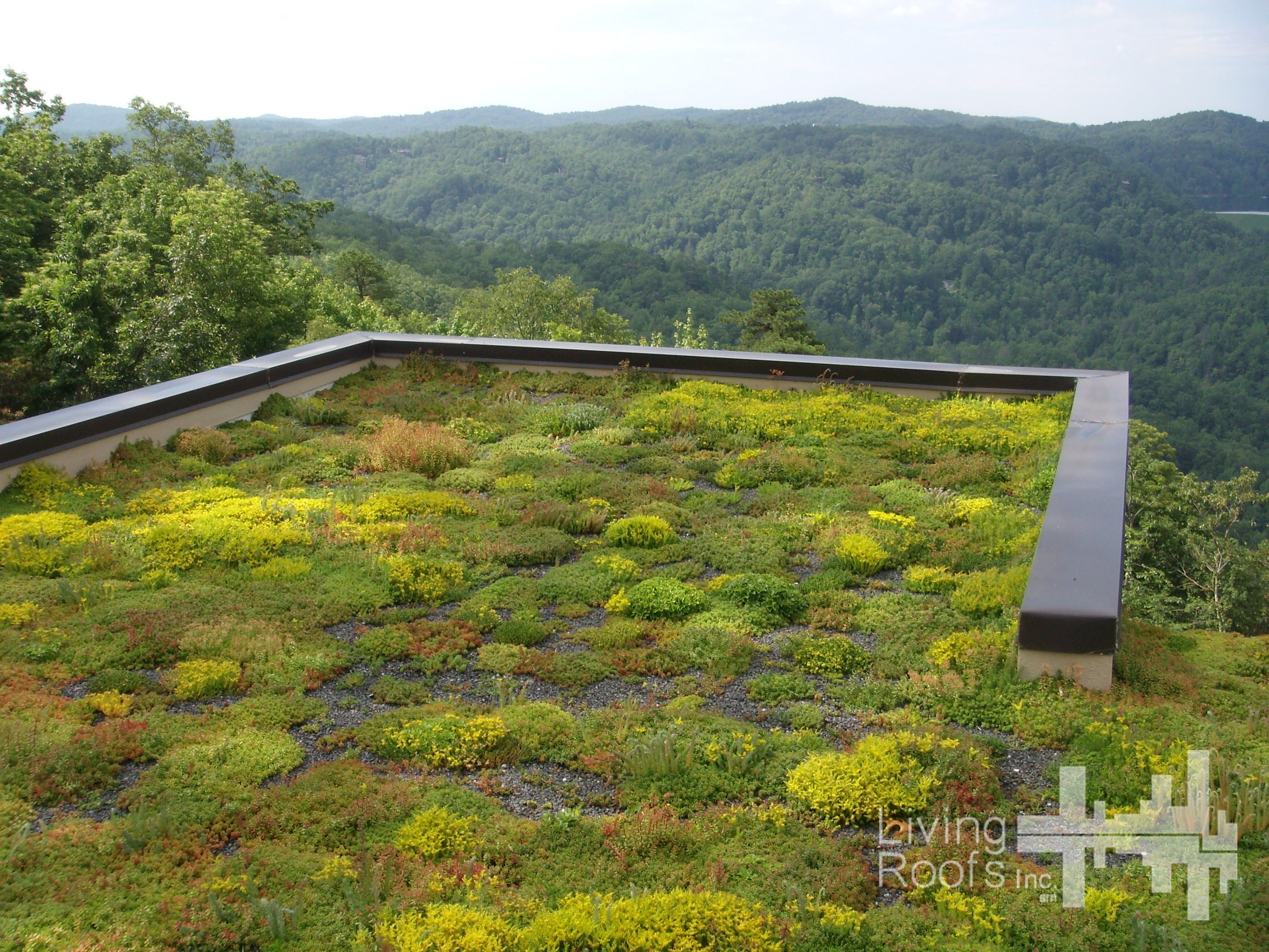Two Extensive Green Roofs Were Incorporated Into The Design Of The House To Minimize Its Impact Visually An Green Roof Residential Green Roof Design Green Roof