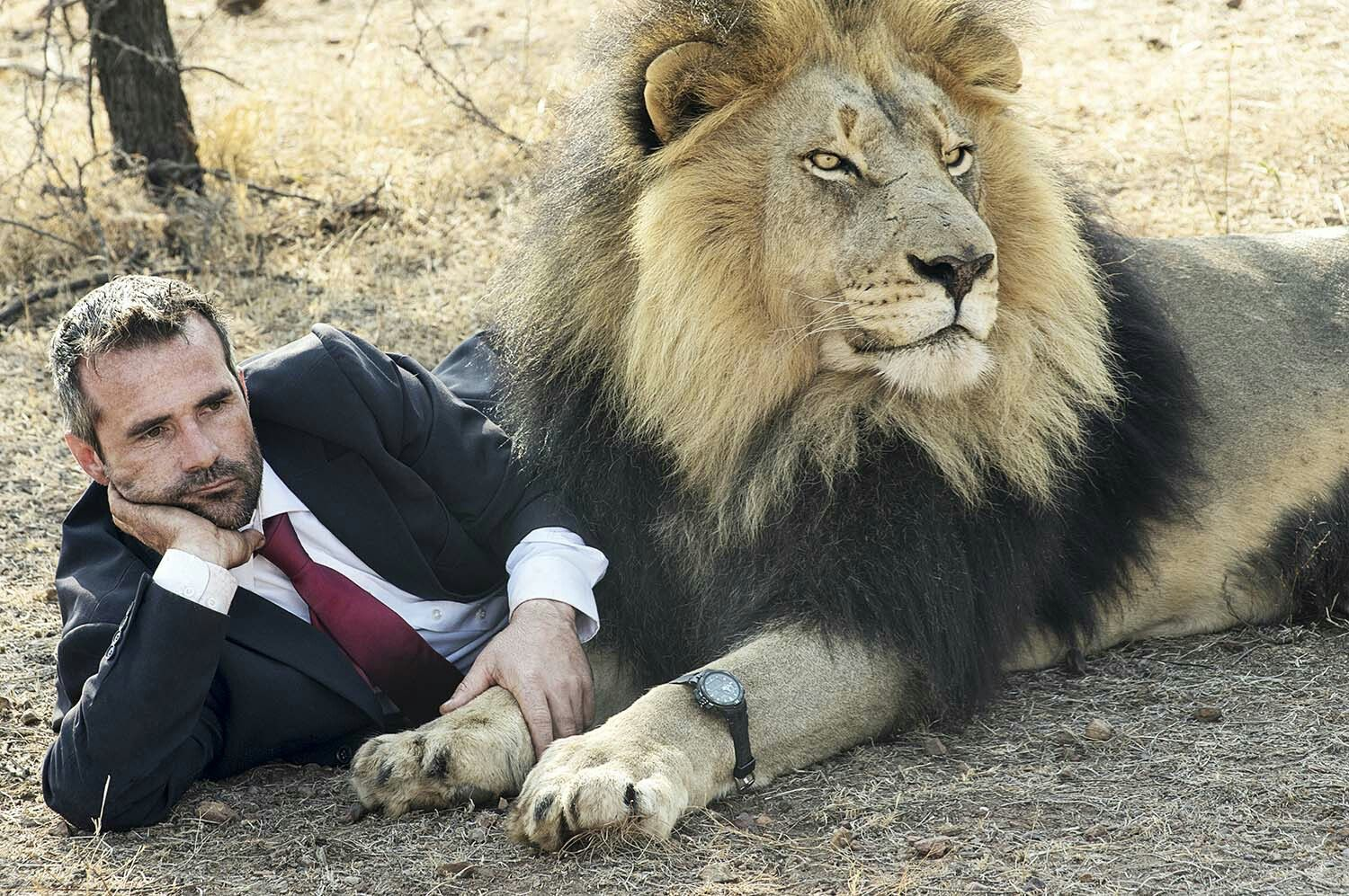 Kevin Richardson - Lion | Kevin richardson, Animals wild, Animals ...
