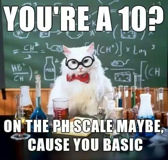 Chemistry Cat doles out more pun-nishment! Education Math Science - best of periodic table joke au