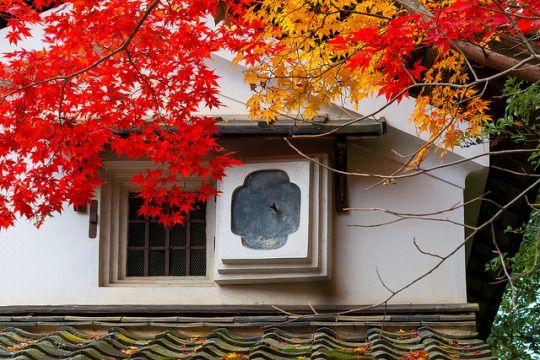 紅葉 - 詩仙堂 丈山寺 / Shisendo - Jyozan-ji Temple by Active-U on Flickr.