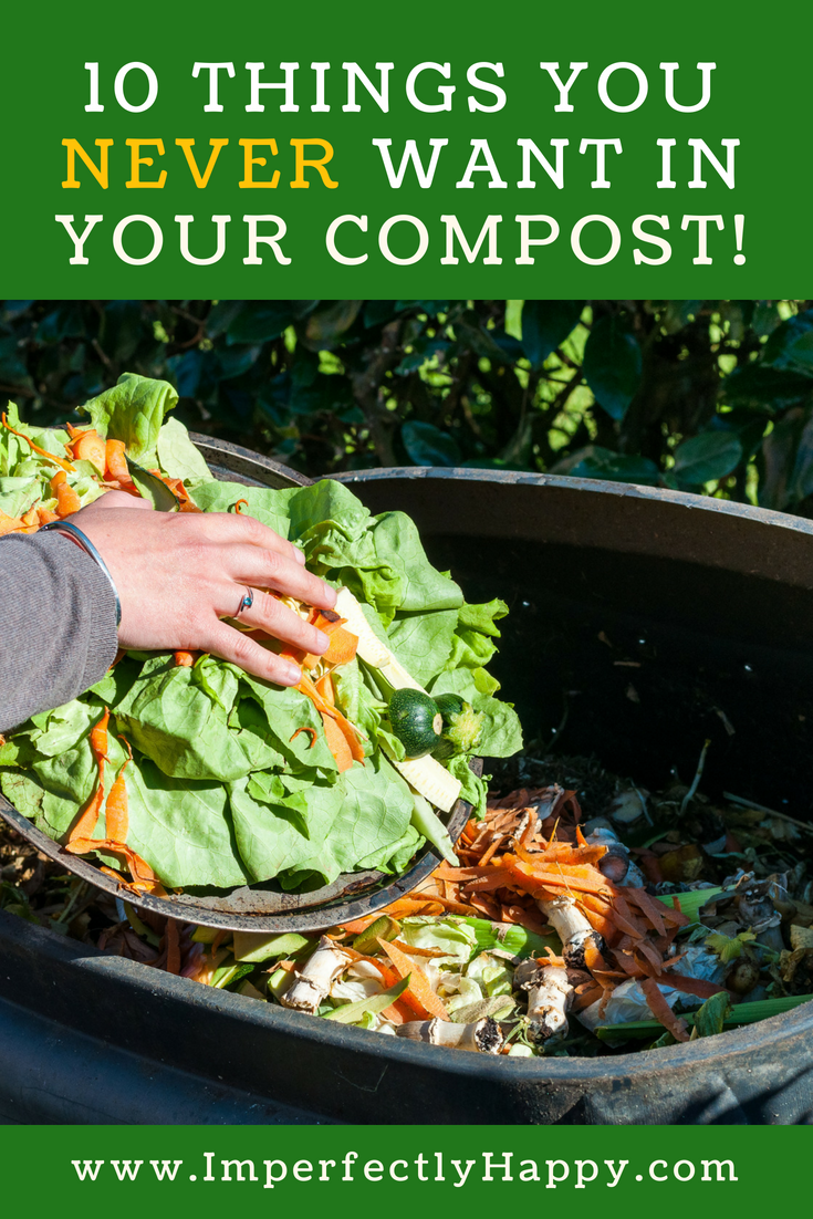 Composting 10 Things You NEVER Want In Your Compost. Keep ...