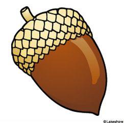 acorn clip art google search templates pinterest clip art rh pinterest com acorn clipart printable acorn clipart black and white