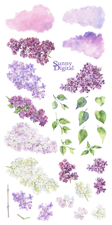 Lilac Clipart Floral Watercolor Handpainted Spring Flowers Etsy Lilac Painting Floral Watercolor Flower Art