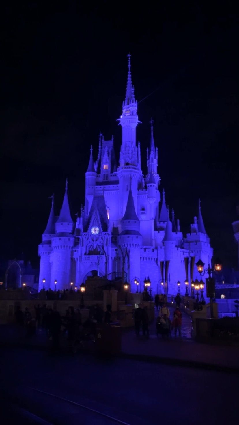 wannabephotographer33 on Instagram: The magic I miss 💫 - - - - #cinderellacastle #magickingdom #disney #waltdisneyworld #waltdisney #disneyparkslive #disneylife…