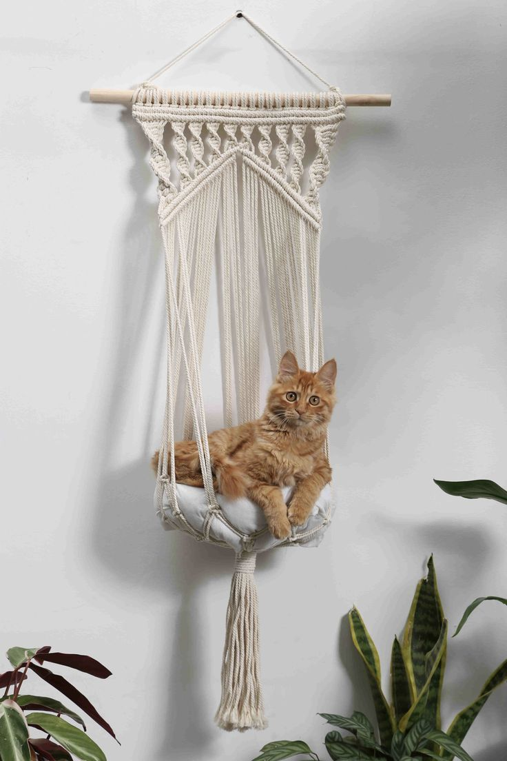 Macrame cat hammock Woven wall hanging dog bed Dip dye macrame cat swing Cat lover birthday gifts boho large pet furnitures supplies toys