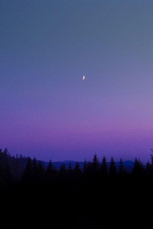 Imagem de moon, night, and sky