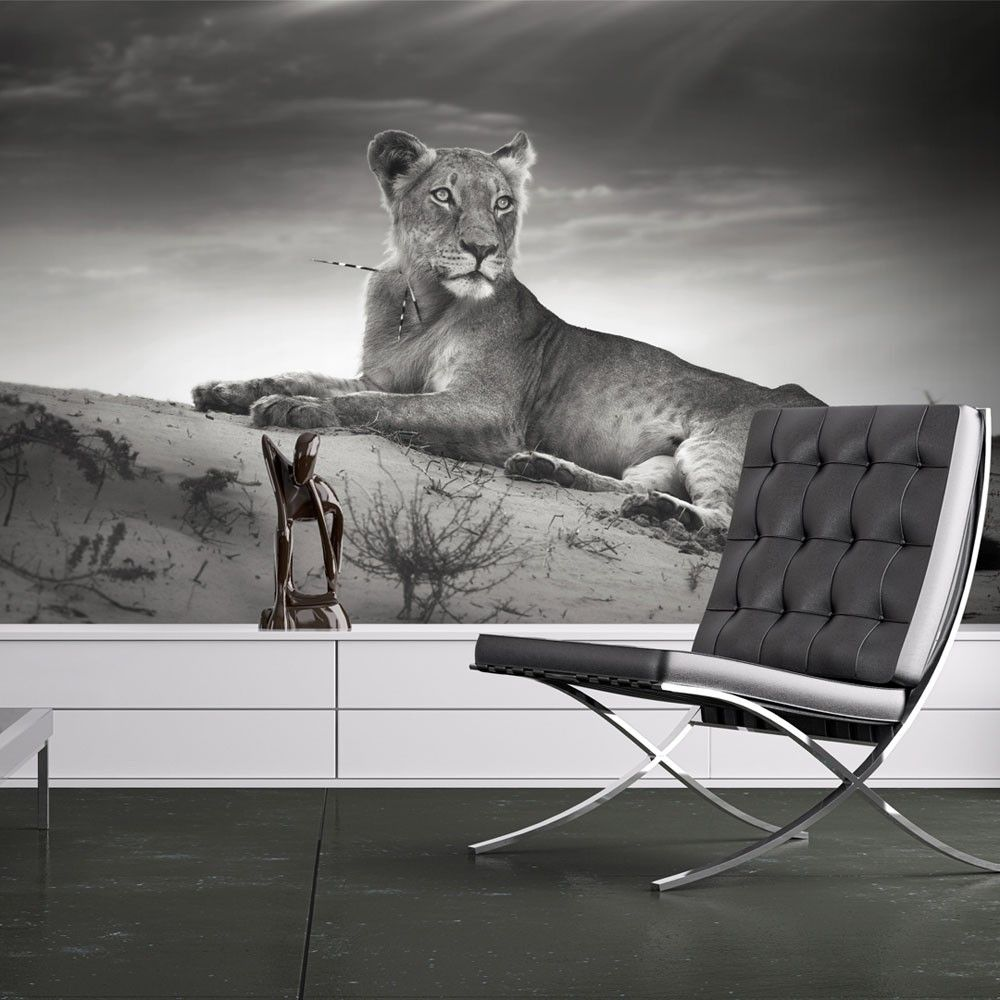Wallpaper Black And White Lioness 3d Wallpaper Mural Black