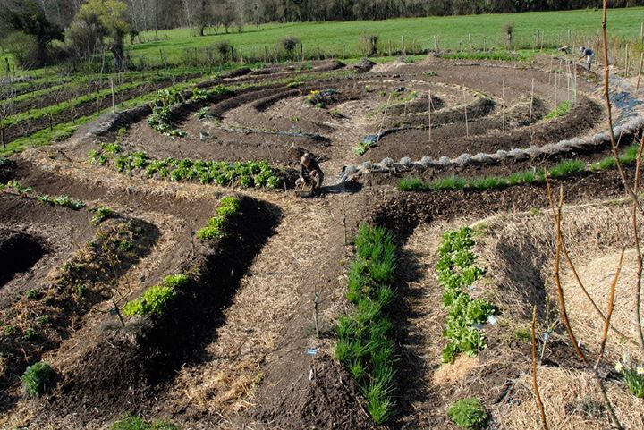 Mandala Garden at School of permaculture, Le Bec-Hellouin, France.