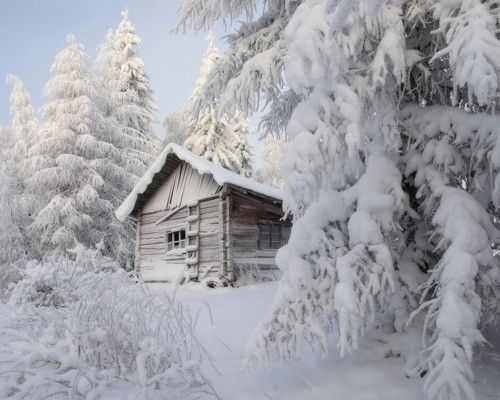 Wonderful cabin in snow makes everything silent...