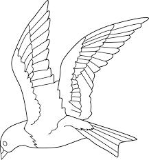 Image Result For Line Bird