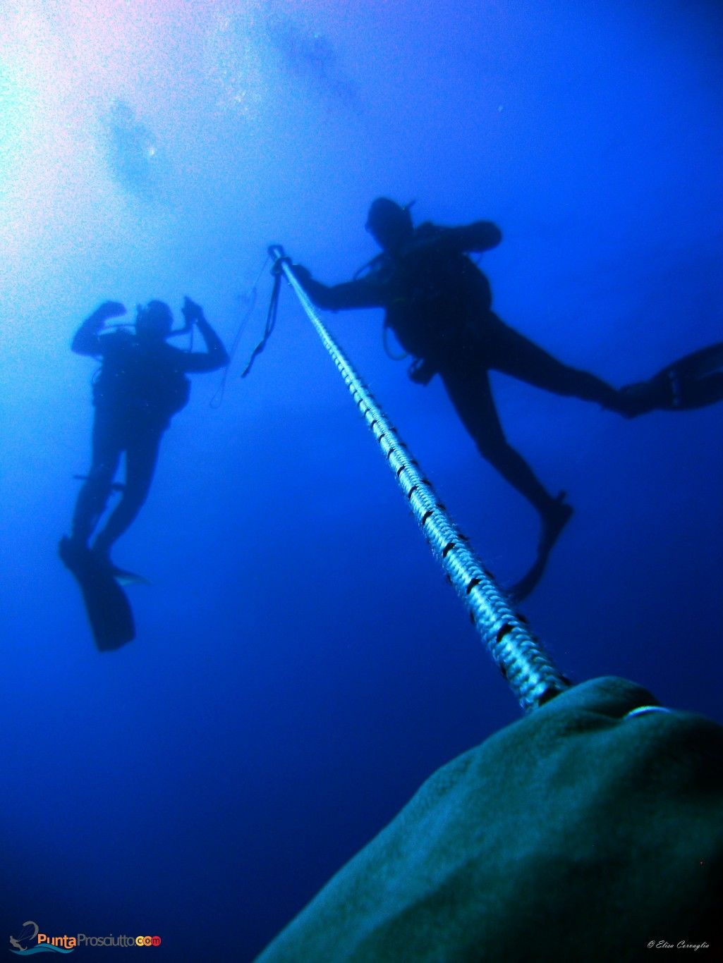 Diving in the marine protected area of Porto Cesareo with Orca Diving Center, Salento, Puglia