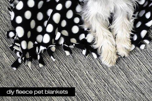 Delightful Diy Pet Gifts Diy Dog Blankets Dog Christmas Gifts
