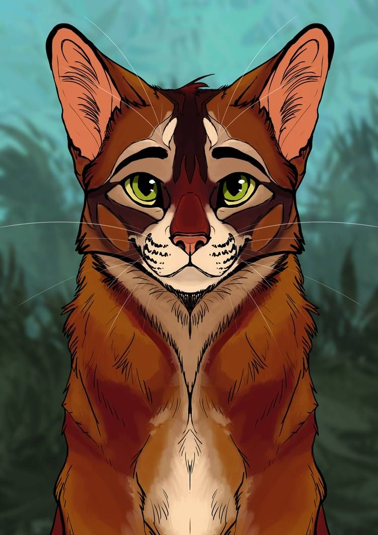 Firestar By Artchert On Deviantart Warrior Cats Series Warrior