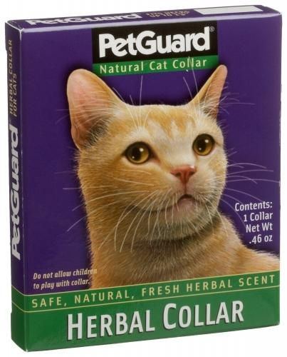 Petguard Herbal Collar For Cats Cat Collars Cat Fleas Cat Pet Supplies