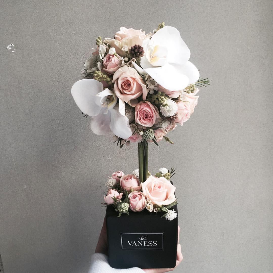 Comment Faire Secher Une Rose Fraiche Épinglé par anaïs bug sur art végétal | composition florale