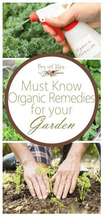 They Didn T Use Chemicals On The Food They Would Feed To Their Kids And Gardening Belonged Of D Garden Remedies Organic Gardening Tips Organic Vegetable Garden