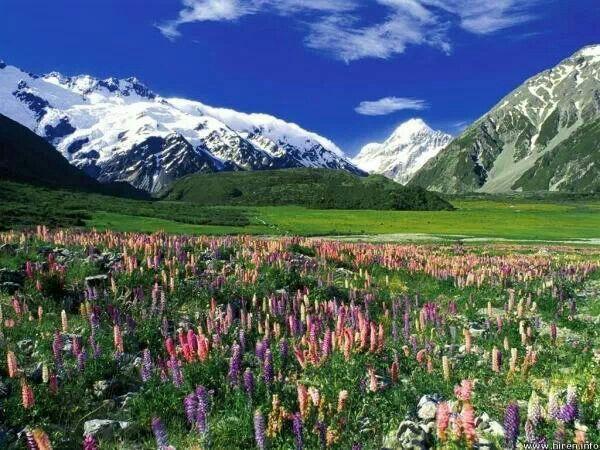 Mount Cook NZL