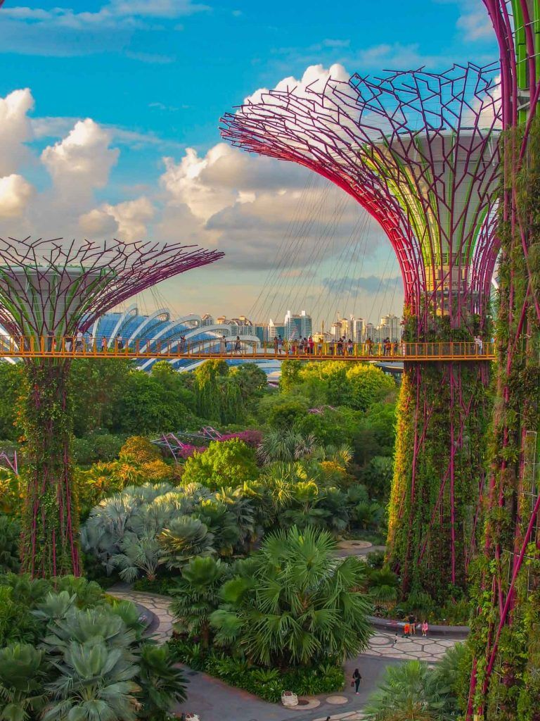 Time Required For Gardens By The Bay