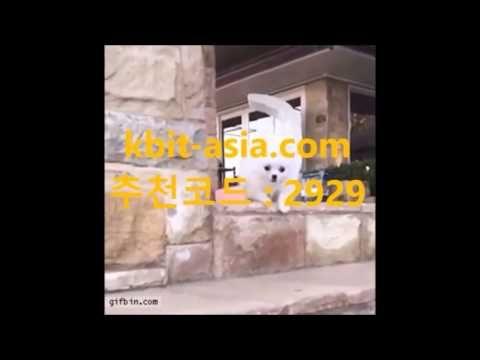 SCBET 해외축구경기 SC벳주소 kbit-asia.com SCBET 해외축구경기 SC벳주소