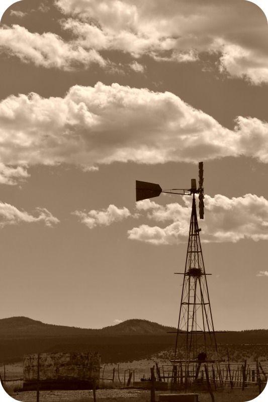 Gatlin windmill