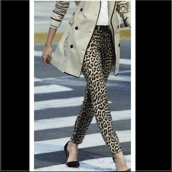 Leopard pants Leopard statement pants. Make them stop and stare with these cotton and spandex blend pants!! Perfect condition with zipper and button closure! E39 Pants Straight Leg